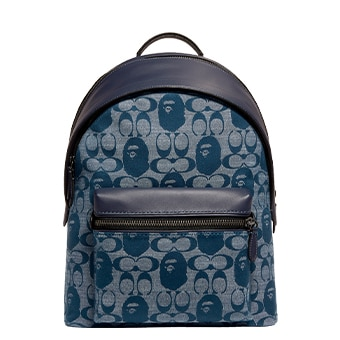 BAPE X bag1
